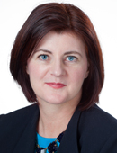 Virginia Nicholson, Commercial Litigation Attorney