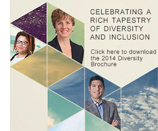 Click here to download 2014 Diversity Brochure