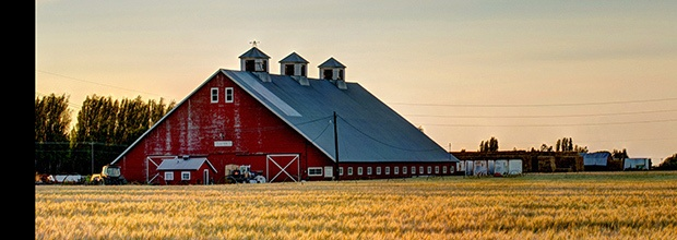 Washington Dairy Farmers Rest Breaks and Meal Periods: Tips to Stay in Compliance